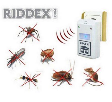 riddex-04